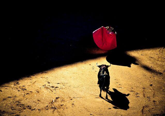 Corrida de toros (imagen referencial)