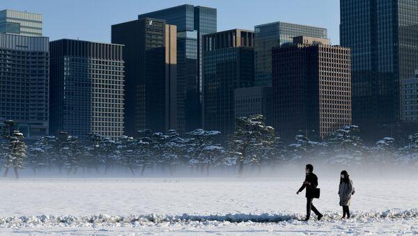 Una nevada en Tokio, Japón (archivo) - Sputnik Mundo