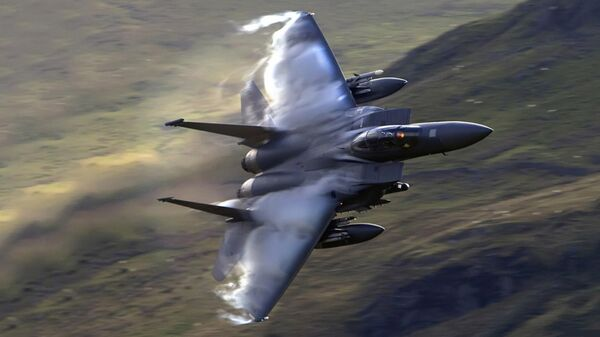 Un caza F-15 - Sputnik Mundo