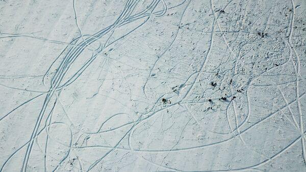Lugar del siniestro del avión de pasajeros An-148 - Sputnik Mundo