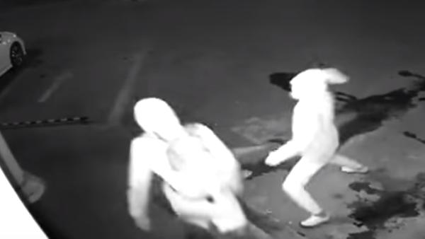 Crimen imperfecto: un ladrón frustra un robo por noquear a su colega con un ladrillo - Sputnik Mundo