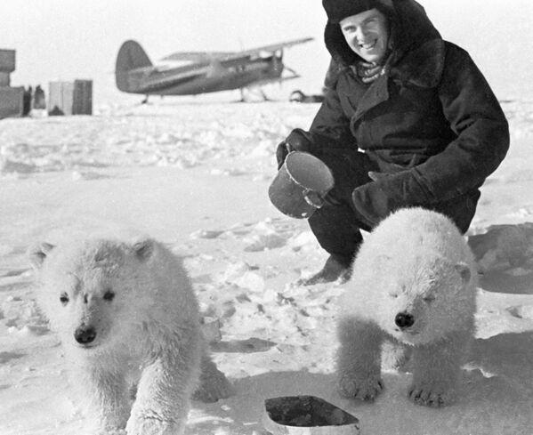 Un viaje por todas las estaciones polares de Rusia - Sputnik Mundo