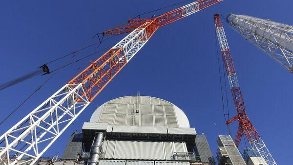 Sarcófago sobre el reactor de la central nuclear japonesa Fukushima-1 - Sputnik Mundo