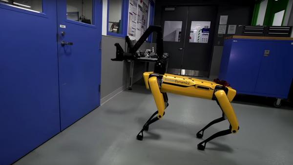 Boston Dynamics pone al límite a sus robots - Sputnik Mundo