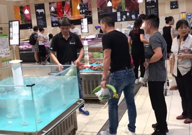 Un pez 'ninja' trata de escapar volando de la pecera de un supermercado