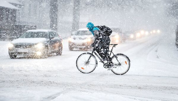 Fuerte nevada en Dinamarca - Sputnik Mundo