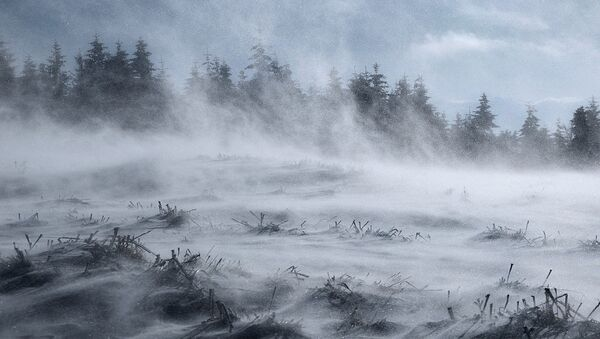 Territorios cubiertos de nieve - Sputnik Mundo