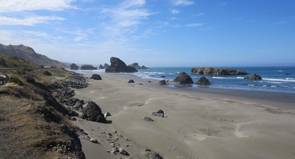 Una playa en EEUU