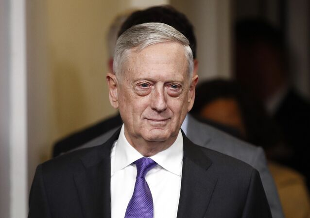 James Mattis, secretario de Defensa de EEUU (archivo)