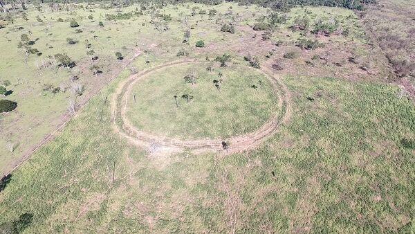 Uno de los geoglifos encontrados en la Cuenca del Amazonas - Sputnik Mundo