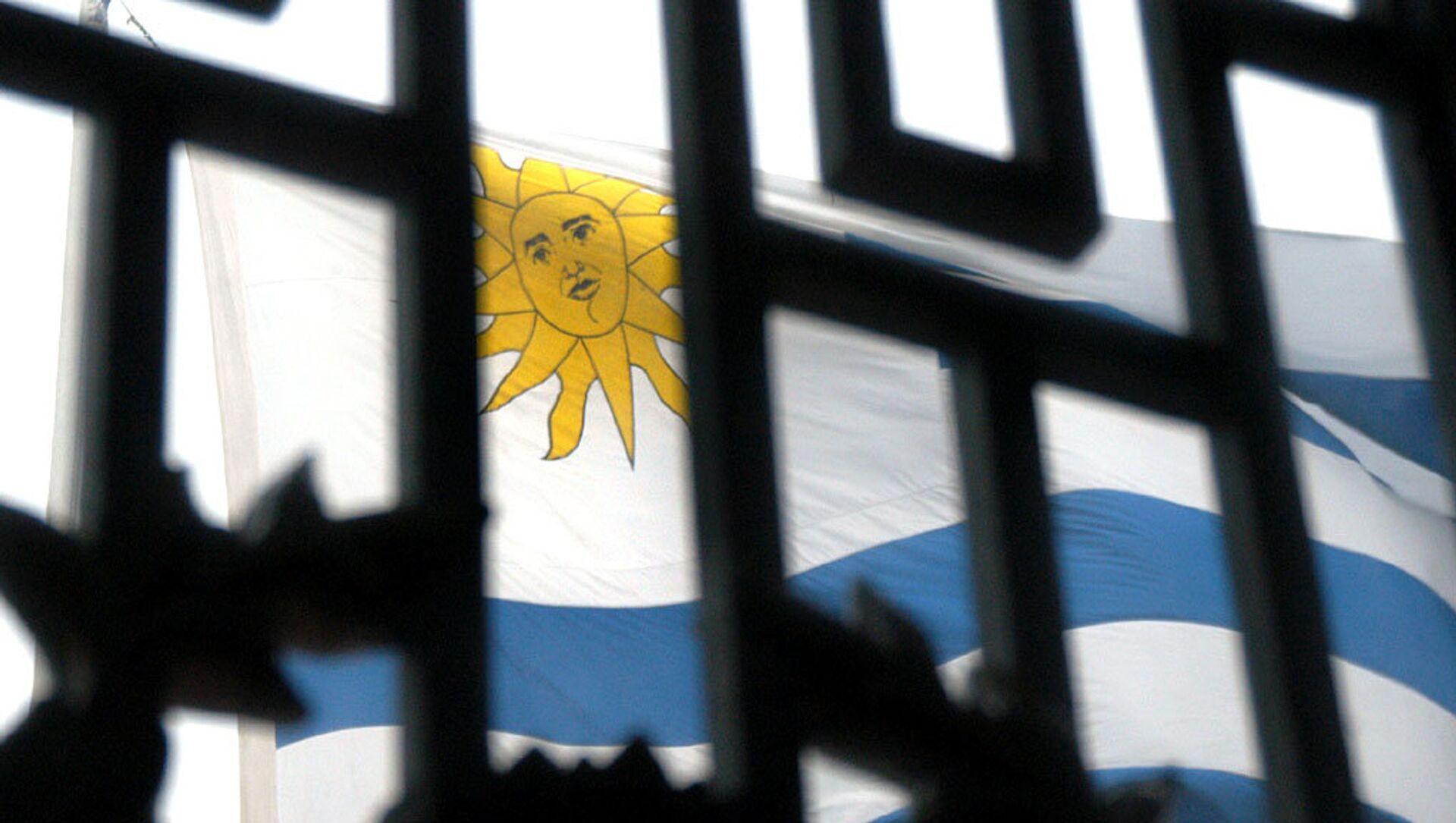 La bandera de Uruguay - Sputnik Mundo, 1920, 04.02.2021