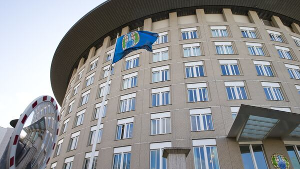 La sede de la OPAQ - Sputnik Mundo