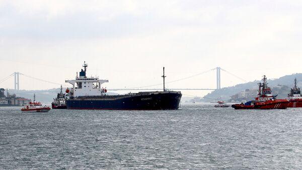 El buque de carga Vitaspirit - Sputnik Mundo