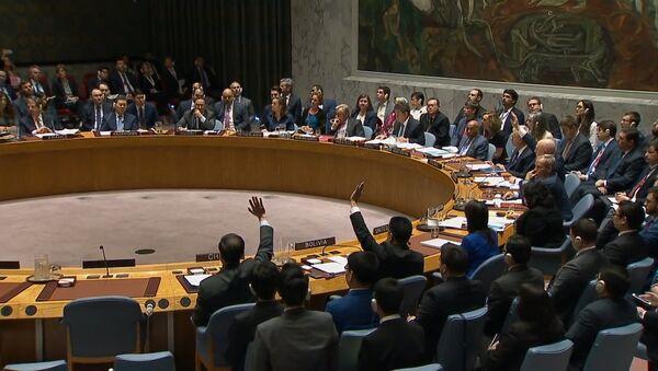 El Consejo de Seguridad de la ONU rechaza la resolución rusa sobre el ataque contra Siria - Sputnik Mundo