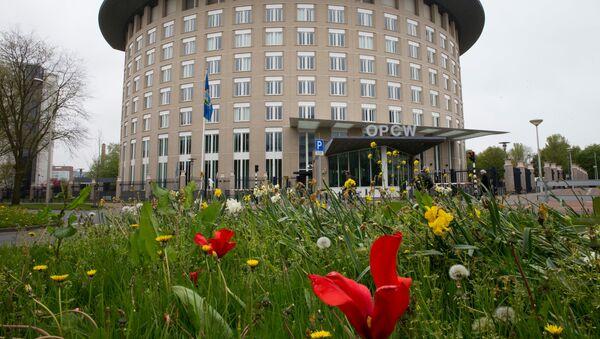 Sede de la OPAQ en La Haya - Sputnik Mundo