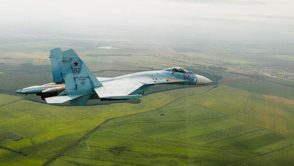 Un caza Su-27 ruso - Sputnik Mundo