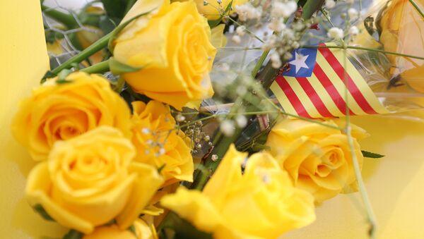 'Estelada', bandera independentista de Cataluña - Sputnik Mundo