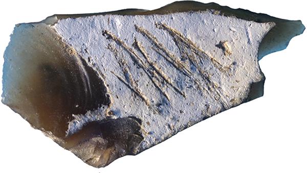 Instrumento neandertal encontrado en la cueva de Kiik-Koba en Crimea - Sputnik Mundo