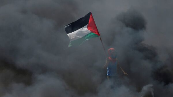 A boy holds a Palestinian flag as he stands amidst smoke during a protest against U.S. embassy move to Jerusalem - Sputnik Mundo