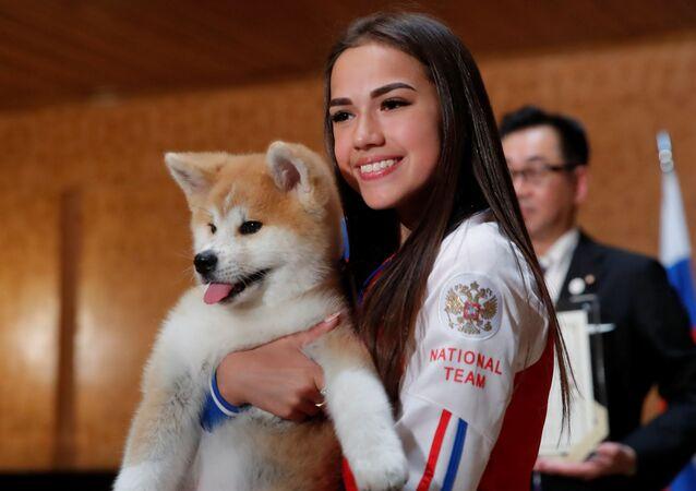 El político japonés Takashi Edo regaló a una de las campeonas de los Juegos Olímpicos de Pyeongchang, Alina Zaguítova, un cachorro de akita inu.