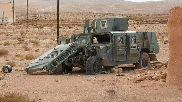 Un campamento del EI creado para entrenar a niños terroristas en la provincia de Hama - Sputnik Mundo