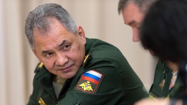 El ministro de Defensa ruso, Serguéi Shoigú - Sputnik Mundo