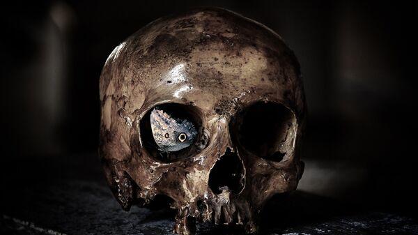 Un cráneo - Sputnik Mundo