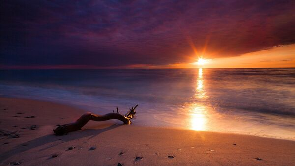 Una playa (imagen referencial) - Sputnik Mundo
