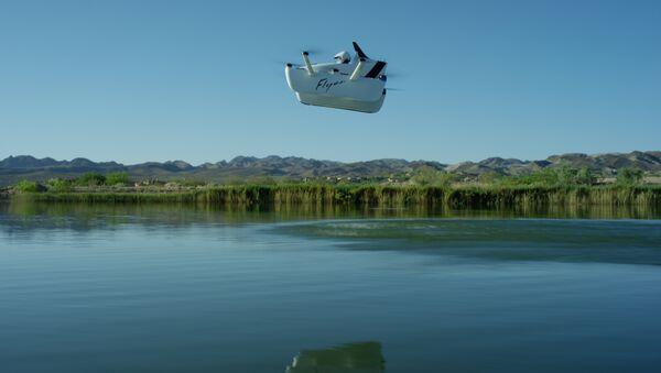 La aeronave ultraligera Flyer durante el vuelo - Sputnik Mundo