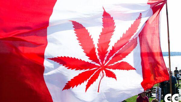 La bandera de Canadá con la imagen de canábis en vez de una hoja de arce (imagen referencial) - Sputnik Mundo