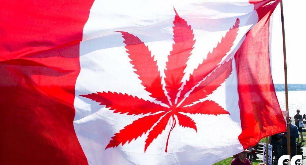 La bandera de Canadá con la imagen de canábis en vez de una hoja de arce (imagen referencial)