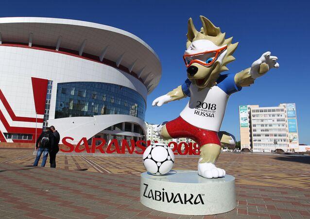 El lobo Zabivaka en Saransk