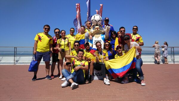 Hinchas de la selección de Colombia - Sputnik Mundo