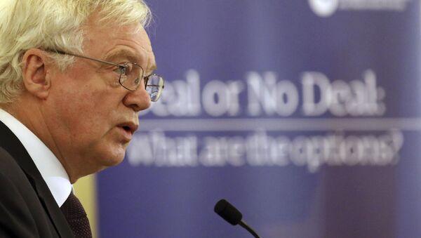 David Davis, secretario del Gobierno del Reino Unido para la Salida de la Unión Europea - Sputnik Mundo