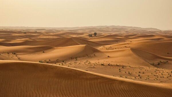 Un desierto (archivo) - Sputnik Mundo