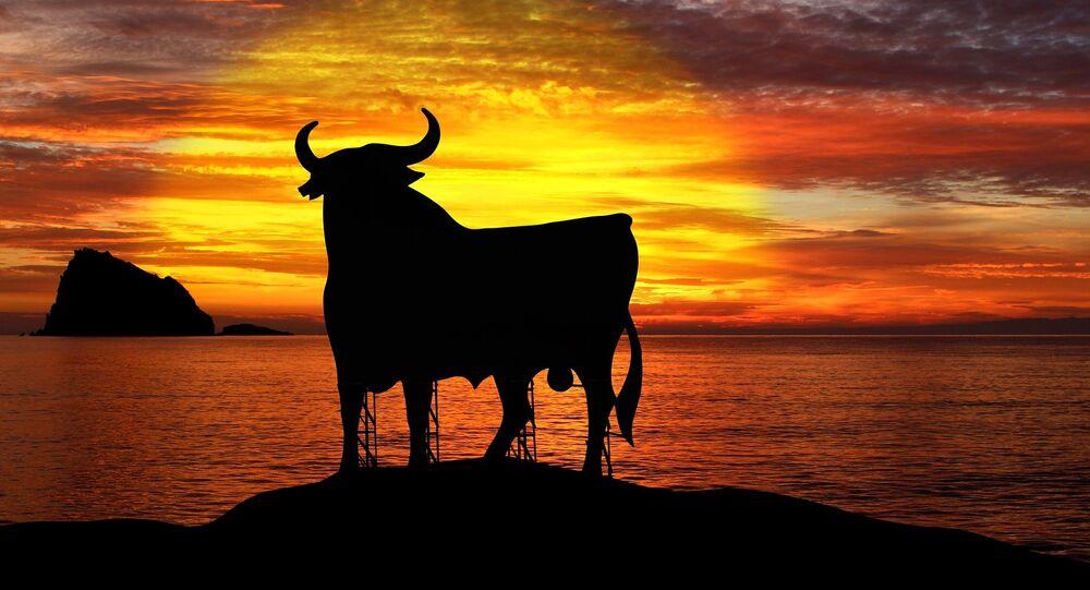 Un toro (imagen referencial)