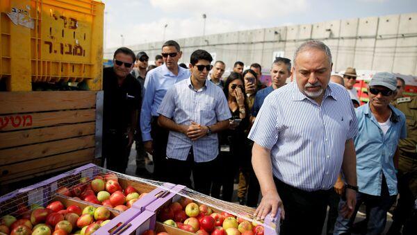 El ministro de Defensa israelí, Avigdor Lieberman, en el paso fronterizo de Kerem Shalom, entre Israel y Gaza - Sputnik Mundo