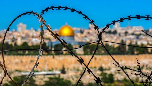 Alambre de púas en un paisaje de Jerusalén - Sputnik Mundo