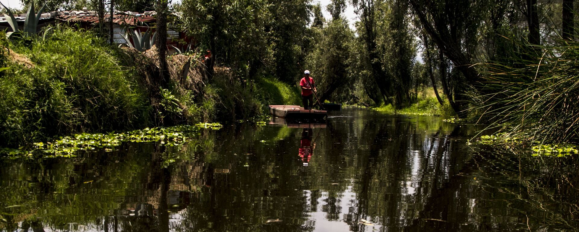Campesino en el canal de Xochimilco el último lago de la Ciudad de México - Sputnik Mundo, 1920, 31.03.2021