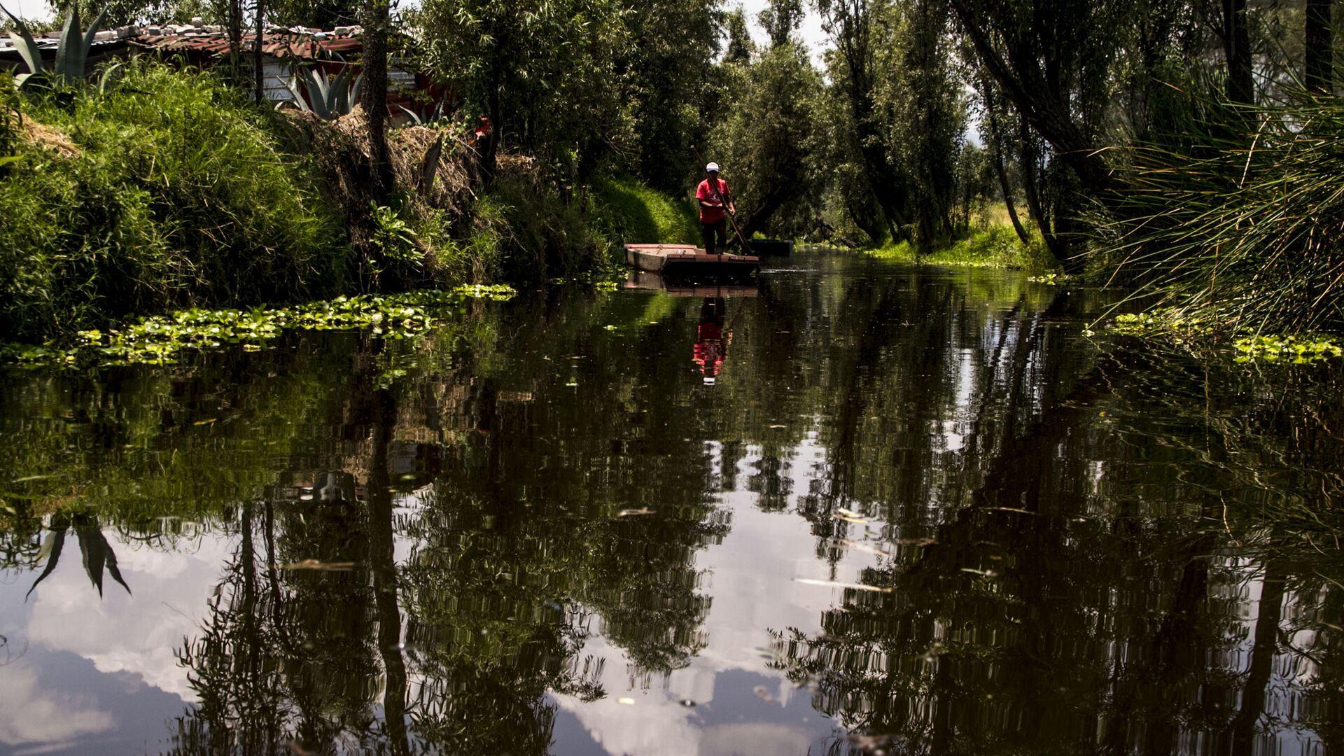 Campesino en el canal de Xochimilco el último lago de la Ciudad de México - Sputnik Mundo, 1920, 09.06.2021