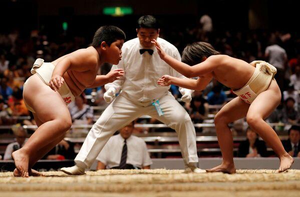 Escolares japoneses compiten por el título de mejor luchador de sumo - Sputnik Mundo