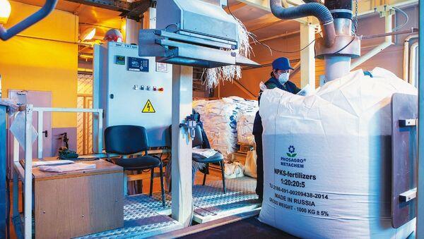 Producción de fertilizantes en una fábrica de PhosAgro - Sputnik Mundo