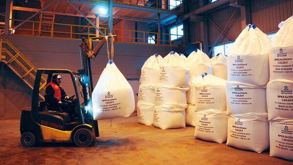 Proceso final de la producción de fertilizantes en una fábrica de PhosAgro - Sputnik Mundo