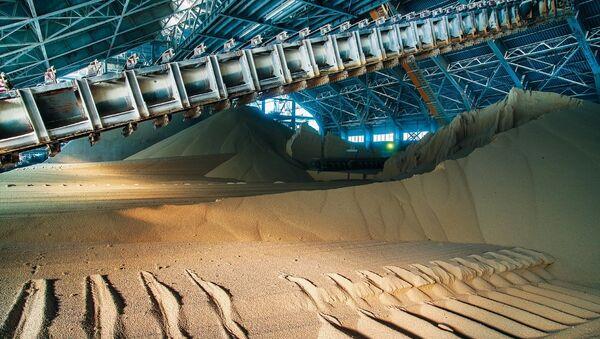 Producción de fertilizantes fosfatados en una fábrica de PhosAgro - Sputnik Mundo