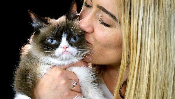 El gato gruñón con su humana (archivo) - Sputnik Mundo