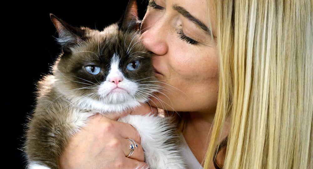 El gato gruñón con su humana (archivo)
