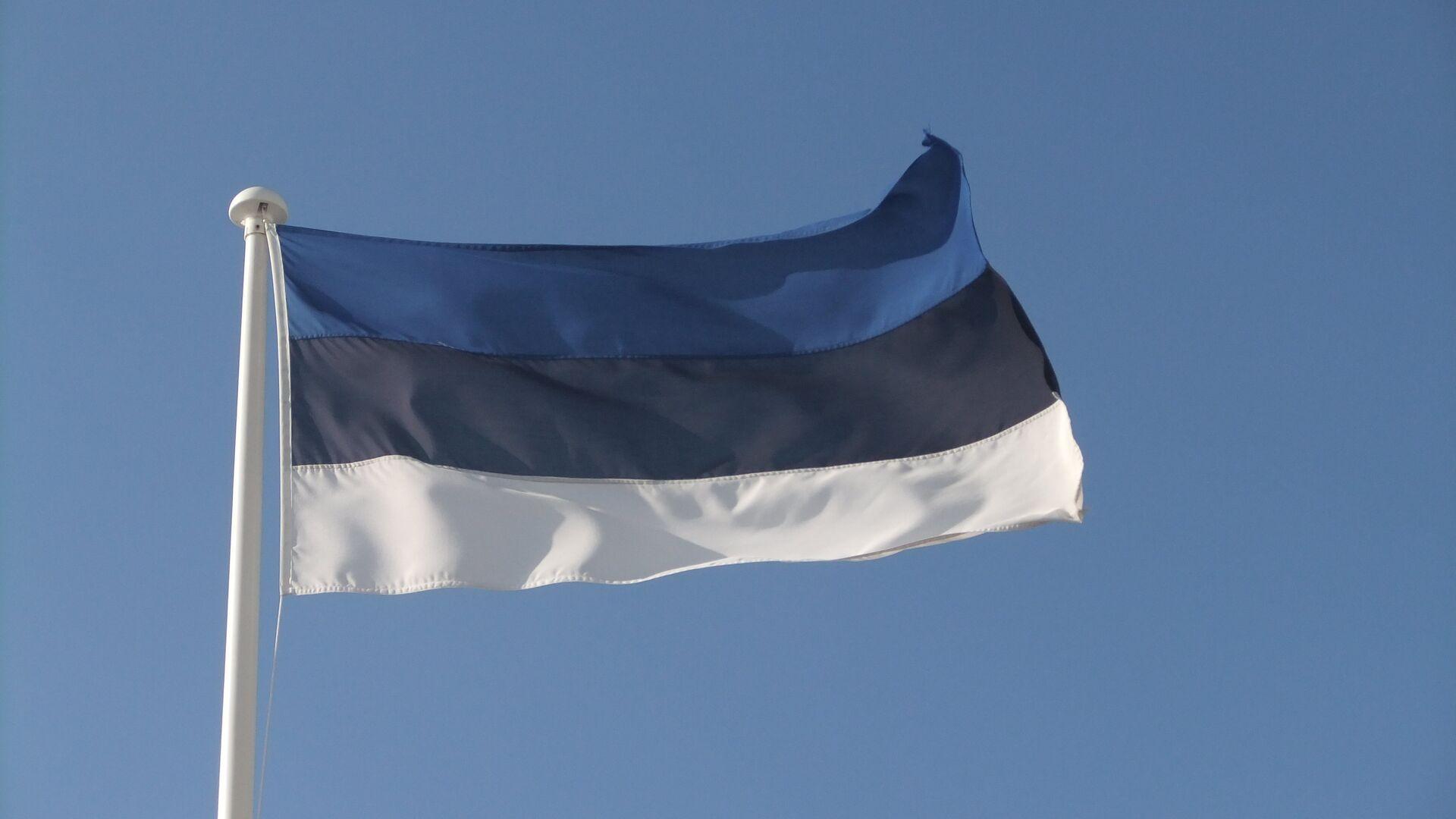 Bandera de Estonia - Sputnik Mundo, 1920, 08.07.2021