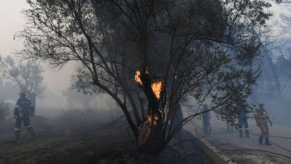 Incendio forestal en Eubea - Sputnik Mundo