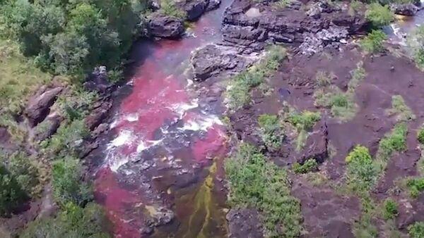 El río más bonito del mundo está en un país latinoamericano - Sputnik Mundo