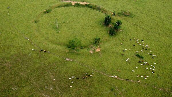 Geoglifos en Acre, Brasil - Sputnik Mundo